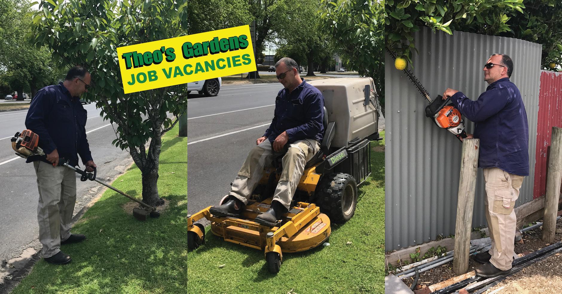 Element Bazaar Theo's Gardens Job Vacancies