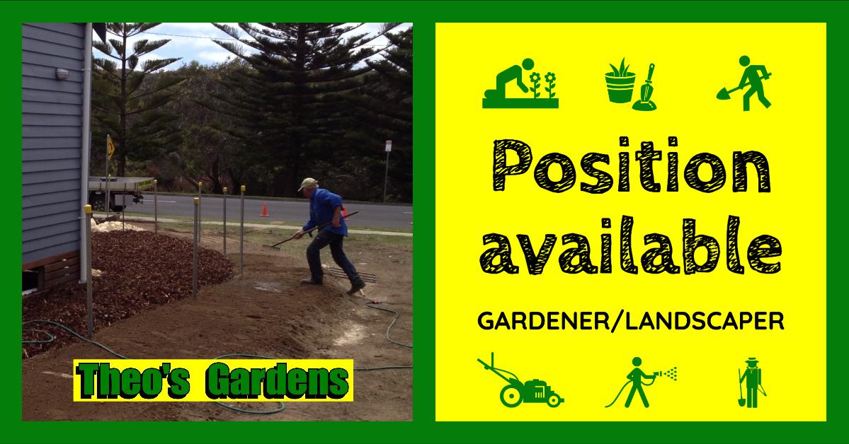 Theo's Gadens Position available Gardener Landscaper